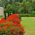 Landscape Gardeners in Mobberley