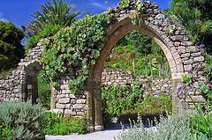Tresco Abbey Gardens, Scilly Isles, UK | A superb Sub-Tropical G