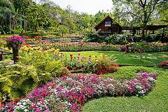 gardeners in Withington