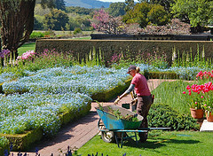 gardeners in Chorlton