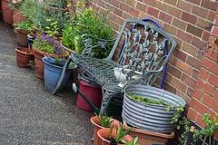 Gardeners In Hale Barns