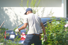 gardeners in Lymm