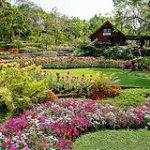 Garden design in Salford