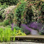 Garden Design in Bolton